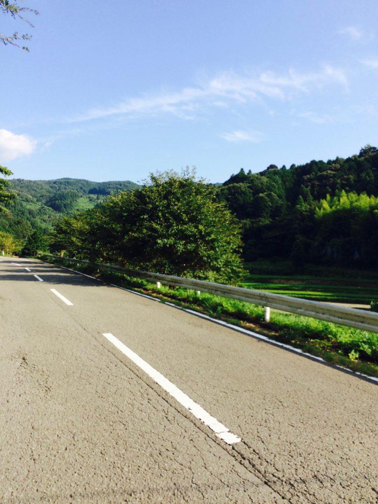和歌山県海南市の黒沢牧場へ向かう道