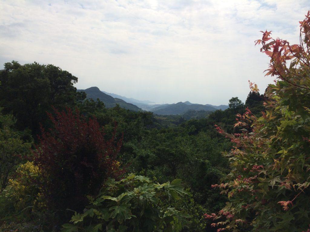 紀美野町のドーシェルからの風景